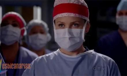 Callie y Arizona resumen de episodio 8×11