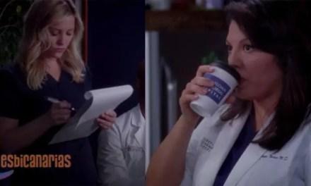 Callie y Arizona resumen de episodio 9×20 Anatomía de Grey