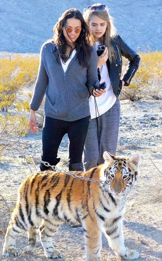 Cara Delevigne y Michelle Rodriguez