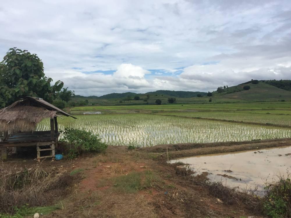 paysage thailande du nord par les bons plans de stef