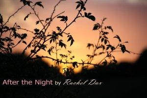 afterthenight