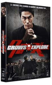 3D DVD CROWS EXPLODE