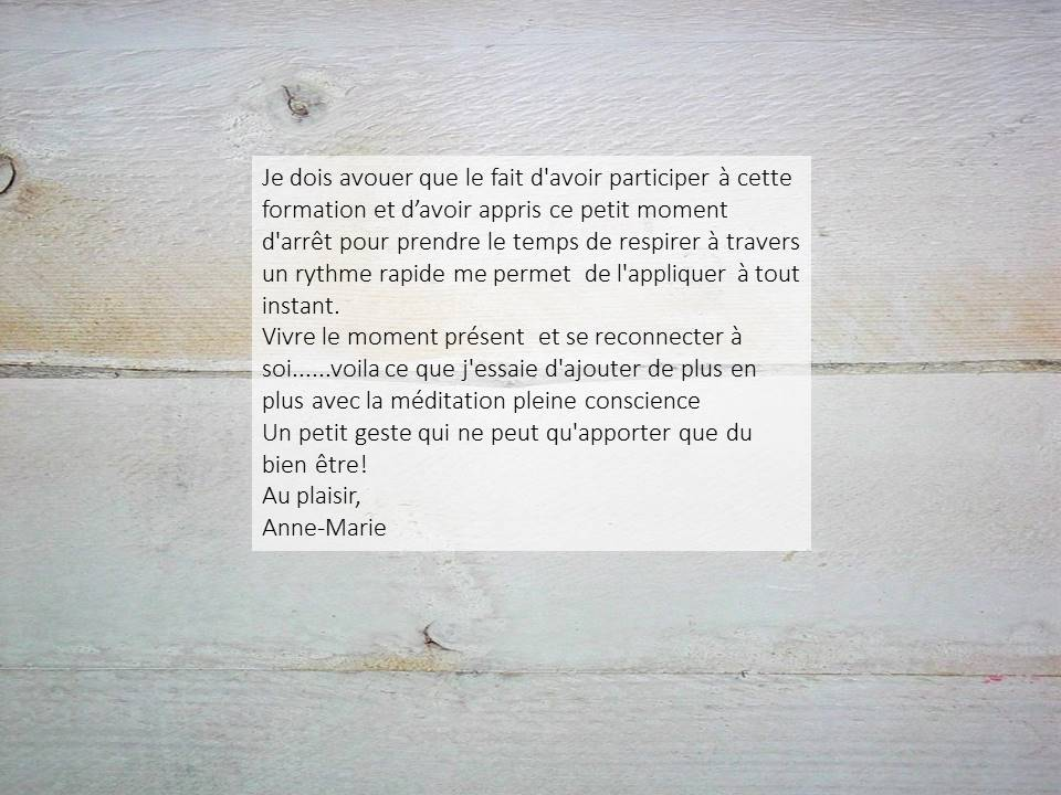 Anne-Marie22