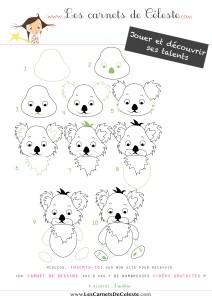 Prospectus-koala