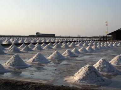 La récolte du sel