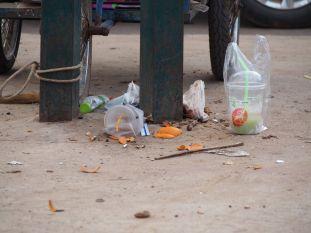 Le Cambodge c'est aussi ça malheureusement