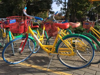 Oh les beaux vélos