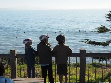 Santa Cruz, sa plage, ses surfeurs...