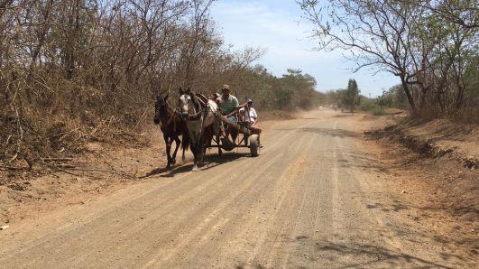 Le cheval est encore très utilisé au Nicaragua
