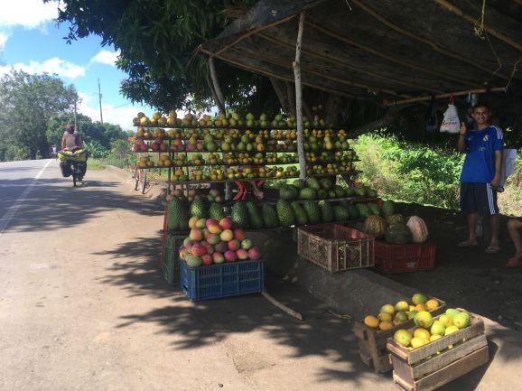 Toujours des fruits sur le bord de la route