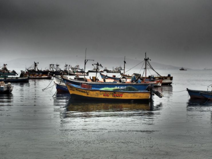 Retour au port de Paracas