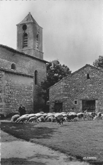 Charel Joseph Armand et le troupeau