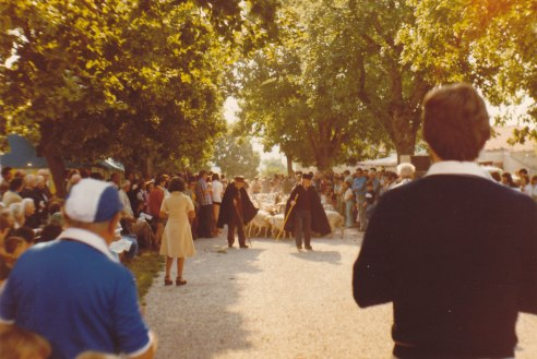 Les bergers et les moutons 15.08.1978