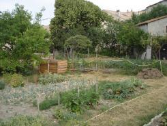 Un jardin potager été 2019