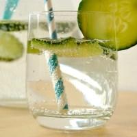 Gin Fizz - Gingembre & concombre