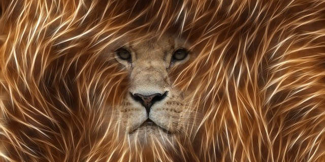 Lion - Photoshop