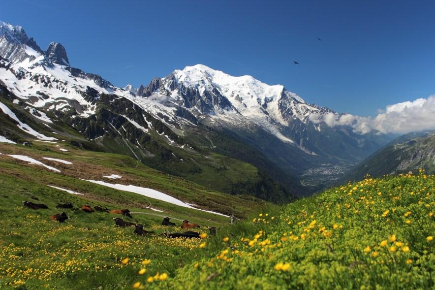 Photo du Mont-Blanc