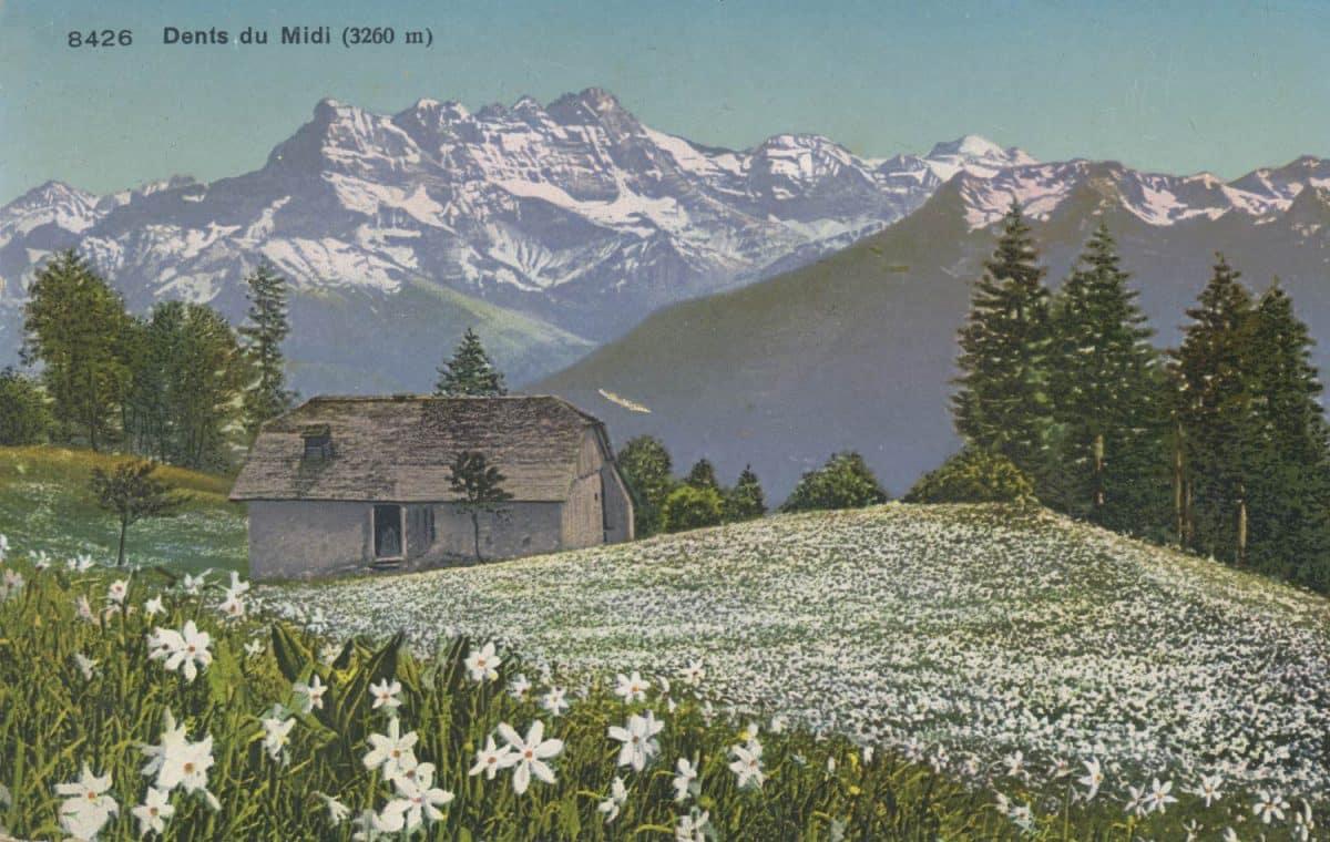Carte postale, Dents du Midi (3260 m)