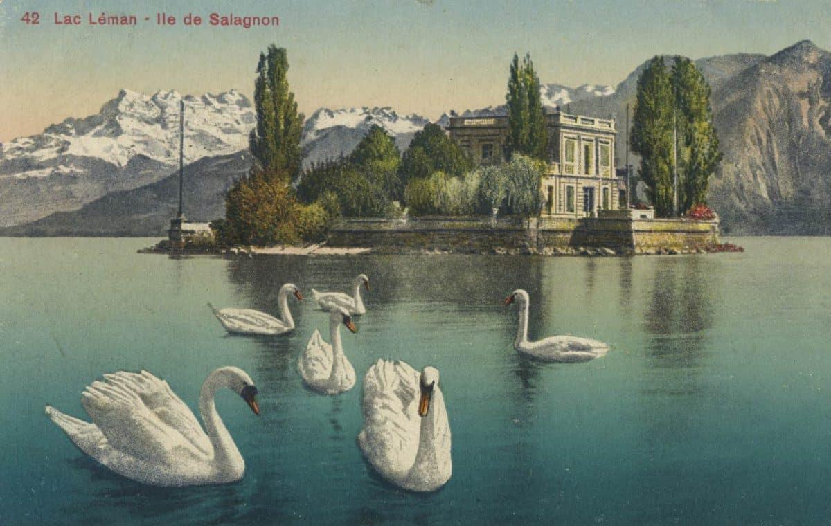 Carte postale. Lac Léman - Île de Salagnon