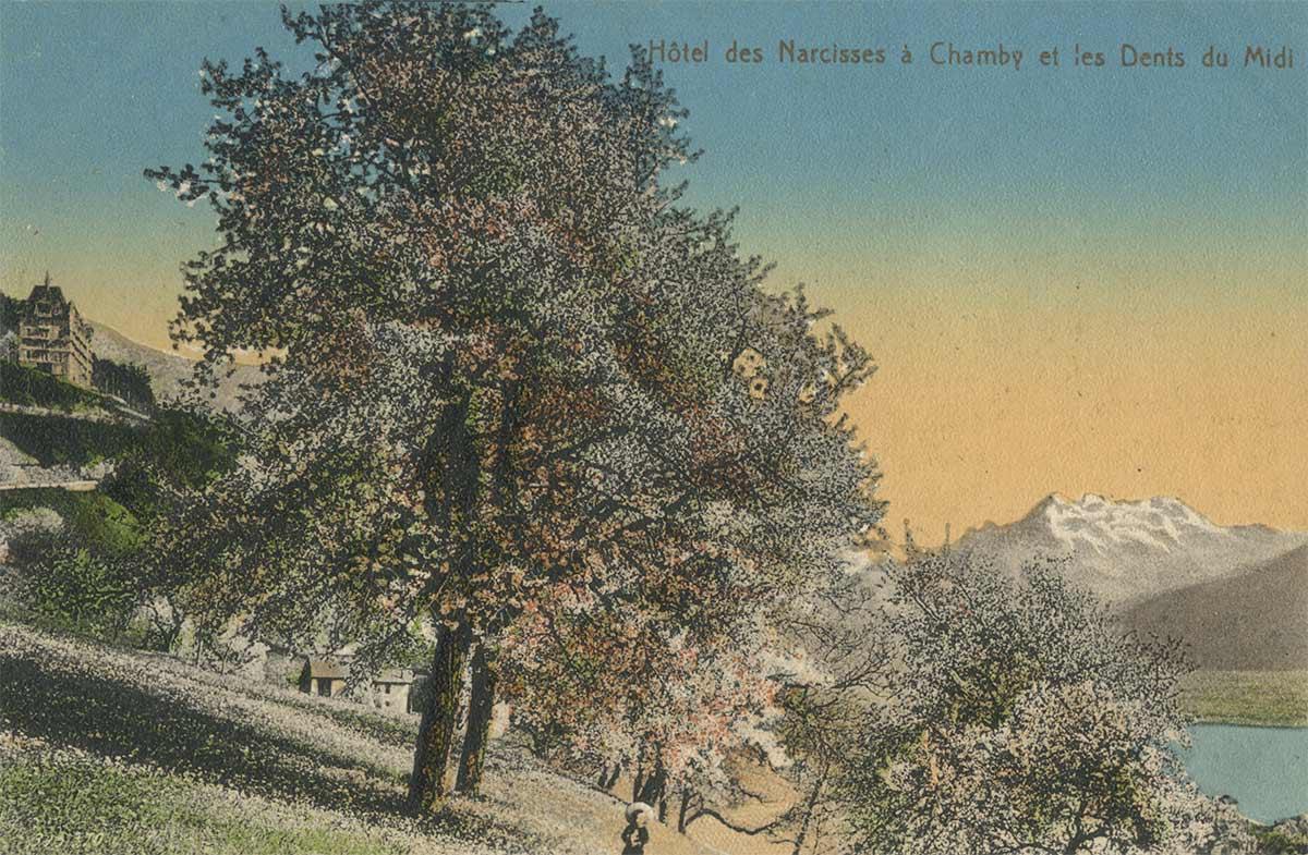 Carte postale. Hôtel des Narcisses à Chamby et les Dents du Midi