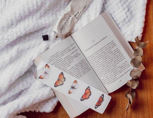 Mes dernières lectures #4 - Les Deux Chouettes