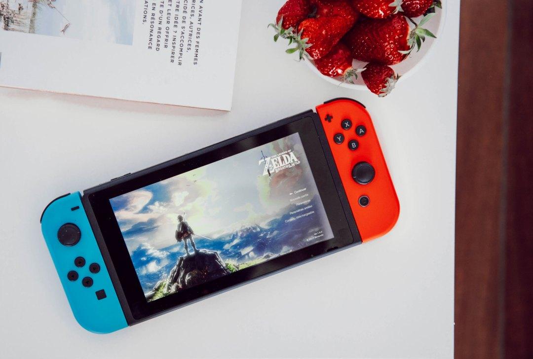 Jeu Zelda sur Switch - Les deux chouettes
