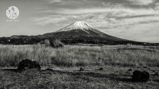 Le Fuji et son chapeau de neige