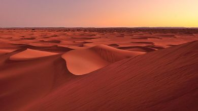 Photo de Exposition « Rêve du Sahara » : Le Maroc s'invite en Pologne