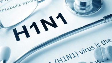 Photo de H1N1:la situation est «normale», selon laDirection régionale de la santé