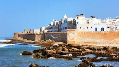 Photo de Essaouira : Des bénévoles nettoient leur ville