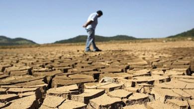 Photo de Changement climatique. La société civile se mobilise