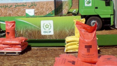 Photo de OCP. Un accord pour de nouvelles solutions d'engrais