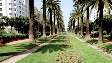 Photo de Casablanca. Des riverains s'insurgent contre la construction d'un parking… à la place d'un jardin