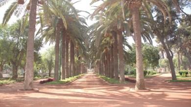 Photo de Des kiosques de lecture bientôt dans les jardins de Casablanca