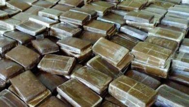 Photo de Nador: Saisie de plus de cinq tonnes de chira