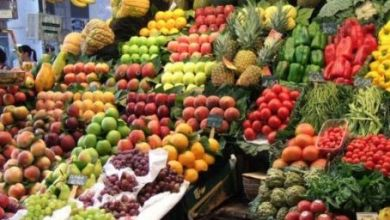 Photo de Espagne. Des entreprises fraudeuses font passer fruits et légumes marocains pour espagnols