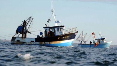 Photo de Dakhla : les armateurs industriels de la pêche pélagique maintiennent leur capacité productive