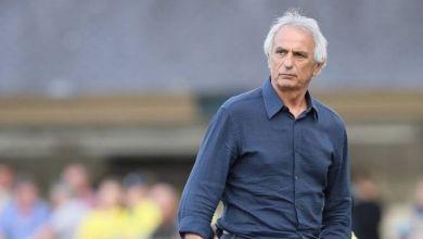 Photo de Lille Olympique Sporting Club: Vahid Halilhodzic élu meilleur entraîneur de l'histoire du club