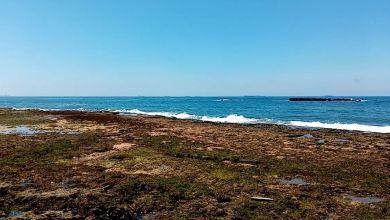 Photo de Rejet d'eaux usées à la plage Paloma: la Société d'aménagement Zenata explique