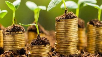 Photo de Finance verte : une porte de sortie de la crise ?