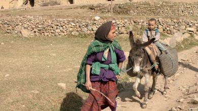 Photo de Femmes rurales : les coopératives, vectrices de l'empowerment socio-économique