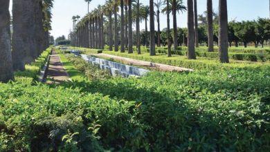 Photo de Espaces verts au Maroc: des plans finalisés pour sept villes