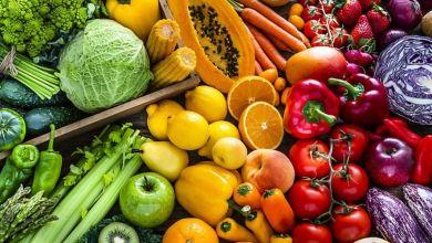 Photo de Fruits et légumes: ce que dit le nouveau projet de loi