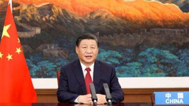 Photo de Fonds de biodiversité : la Chine va miser 233 millions de dollars