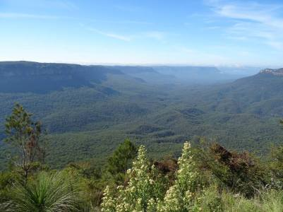 blue mountains0001