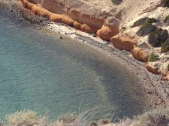 shark bay (13)