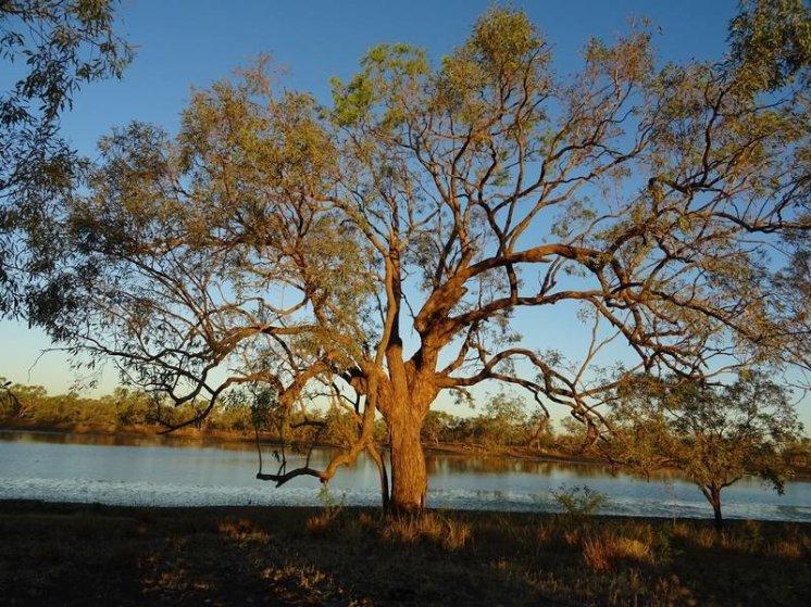 outback queensland00015016383958962571715..jpg