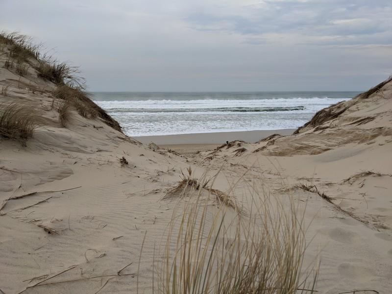 littoral médocain
