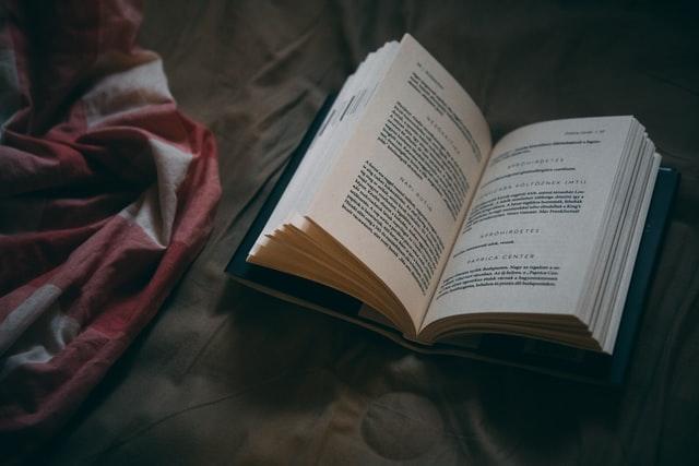 """Alles an ihr irritiert immer alle: Ronya Othmanns beeindruckender erster Roman """"Die Sommer"""""""