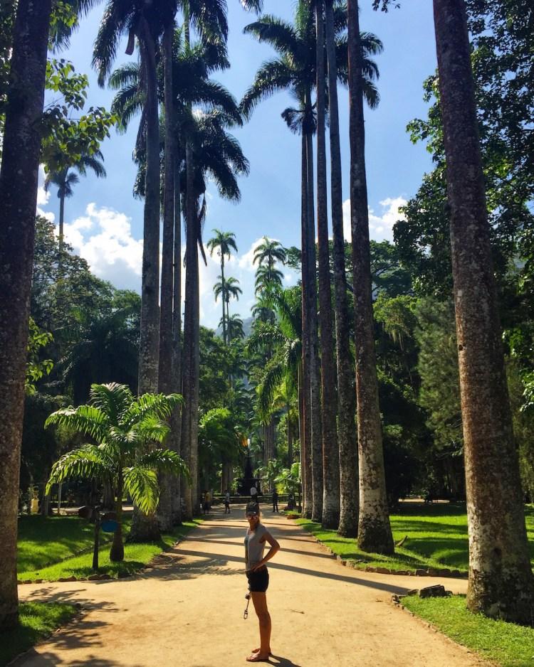 jardin-botanic-rio